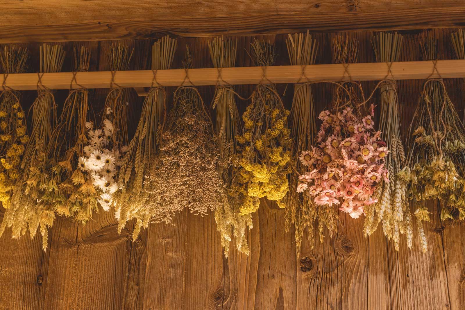 kräuter in der sauna